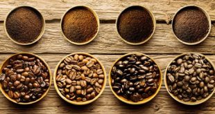 فروش دانه قهوه درجه یک کشور کنیا