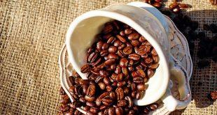 توزیع دانه قهوه