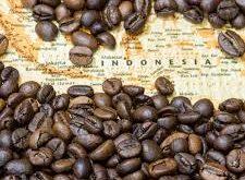 صادرات دانه قهوه اندونزی