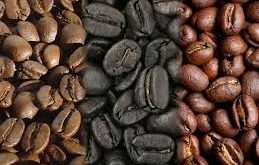دانه قهوه مرغوب مکزیک