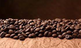 عرضه دانه قهوه ویتنام