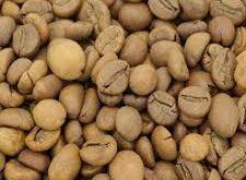 خرید با کیفیت دانه قهوه کشور کلمبیا
