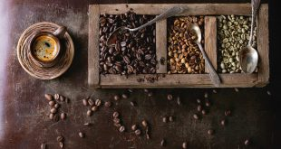 خرید قهوه عربیکا اتیوپی