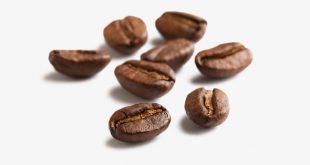 خرید قهوه روبوستا برزیل