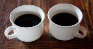 قهوه هسته خرما ارگانیک
