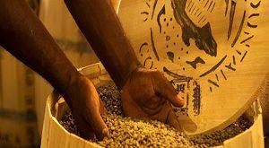 قهوه کنیا کمبو