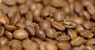 تولیدکنندههای قهوه