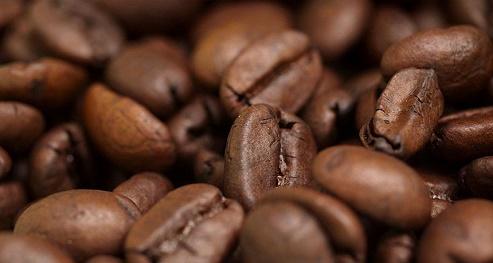 پخش قهوه صادراتی