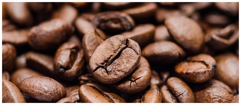 عرضه قهوه تلخ