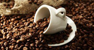 نمایندگی پخش قهوه