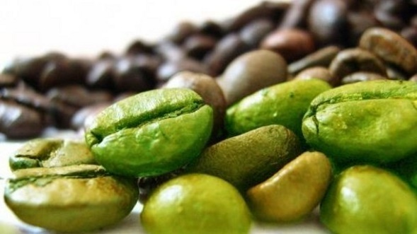خرید قهوه سبز