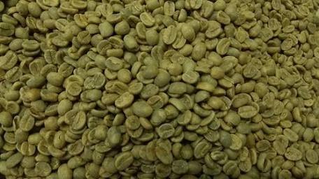فروش قهوه سبز در تهران